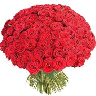 251 red rose - flowers and bouquets on vambuket.com
