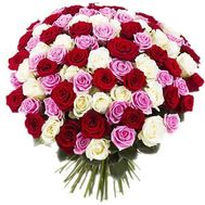 Large bouquet of 101 roses - flowers and bouquets on vambuket.com