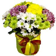 Chrysanthemums in a Hat Box - flowers and bouquets on vambuket.com