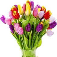 Bright bouquet of tulips - flowers and bouquets on vambuket.com