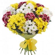 Lovely bouquet of chrysanthemum - flowers and bouquets on vambuket.com