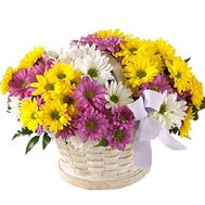 Basket of 11 colorful chrysanthemums - flowers and bouquets on vambuket.com