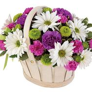 Basket of flowers from 8 chrysanthemums and 9 carnations - flowers and bouquets on vambuket.com