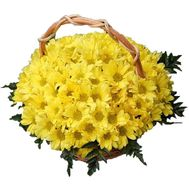 Basket of 19 yellow chrysanthemum flowers - flowers and bouquets on vambuket.com