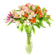 11 alstromeries - flowers and bouquets on vambuket.com