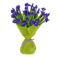 Bouquet of flowers from 21 irises - flowers and bouquets on vambuket.com