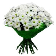 A bouquet of flowers from 19 chamomile chrysanthemums - flowers and bouquets on vambuket.com