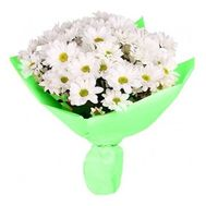 Bouquet of 9 white chrysanthemums - flowers and bouquets on vambuket.com