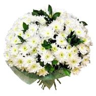 Bouquet of 19 white chrysanthemums - flowers and bouquets on vambuket.com