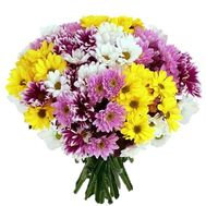 Bouquet of 21 multi-colored chrysanthemums - flowers and bouquets on vambuket.com