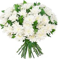 Bouquet of 25 white chrysanthemums - flowers and bouquets on vambuket.com