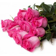 Bouquet of 11 pink roses - flowers and bouquets on vambuket.com