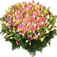 Bouquet of 1001 tulips - flowers and bouquets on vambuket.com