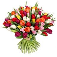 Bouquet of flowers from 101 tulips - flowers and bouquets on vambuket.com