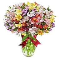Bouquet of 31 multi-colored alstroemerias - flowers and bouquets on vambuket.com