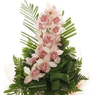 Bouquet of flowers from 1 branch of white orchid - flowers and bouquets on vambuket.com