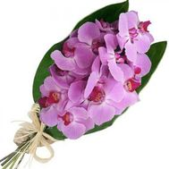 Bouquet of flowers from 3 branches of a pink orchid - flowers and bouquets on vambuket.com