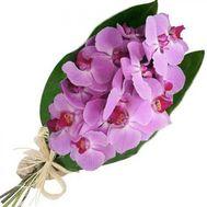 Букет цветов из 3 веток розовой орхидеи - цветы и букеты на vambuket.com