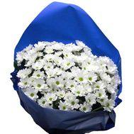 Букет цветов из 11 ромашковидных хризантем - цветы и букеты на vambuket.com