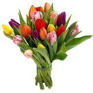 Букет из 19 тюльпанов - цветы и букеты на vambuket.com