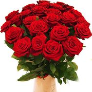 Bouquet of 23 red roses - flowers and bouquets on vambuket.com