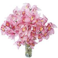 Букет цветов из 5 веток розовой орхидеи - цветы и букеты на vambuket.com