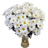 Bouquet of flowers from 15 chamomile chrysanthemums - flowers and bouquets on vambuket.com