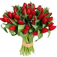 Bouquet of 35 red tulips - flowers and bouquets on vambuket.com