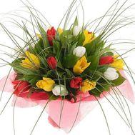 Букет цветов из 23 тюльпанов - цветы и букеты на vambuket.com