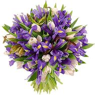 Bouquet of flowers from irises and white tulips - flowers and bouquets on vambuket.com