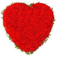 101 red carnations - flowers and bouquets on vambuket.com