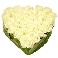 27 white roses - flowers and bouquets on vambuket.com