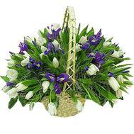 Корзина из 45 тюльпанов и 26 ирисов - цветы и букеты на vambuket.com