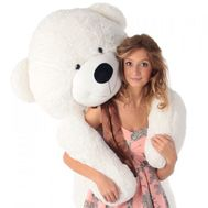 Teddy Bear 2 m - flowers and bouquets on vambuket.com