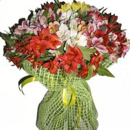 Bouquet of 51 alstromerias - flowers and bouquets on vambuket.com