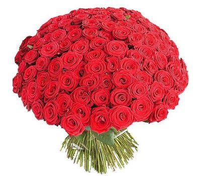 """""""251 красная роза"""" в интернет-магазине цветов vambuket.com"""