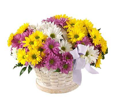 """Корзина из 11 разноцветных хризантем"" in the online flower shop vambuket.com"