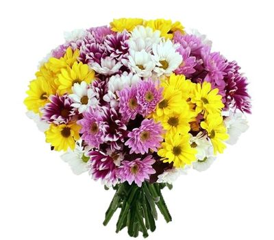 """""""Bouquet of 21 multi-colored chrysanthemums"""" in the online flower shop vambuket.com"""