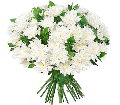 """""""Bouquet of 25 white chrysanthemums"""" in the online flower shop vambuket.com"""