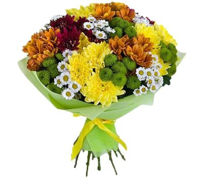 """""""Bouquet of 27 multi-colored chrysanthemums"""" in the online flower shop vambuket.com"""