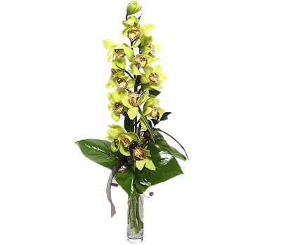 """""""Букет цветов из 1 ветки желтой орхидеи"""" в интернет-магазине цветов vambuket.com"""