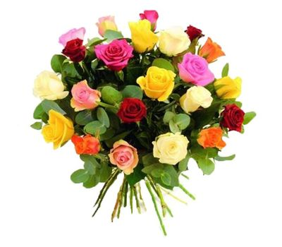 """""""Bouquet of 25 multi-colored roses"""" in the online flower shop vambuket.com"""