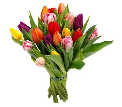 """""""Букет из 19 тюльпанов"""" в интернет-магазине цветов vambuket.com"""