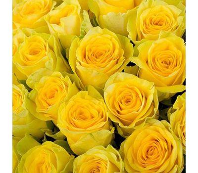 """""""Желтые розы поштучно"""" в интернет-магазине цветов vambuket.com"""