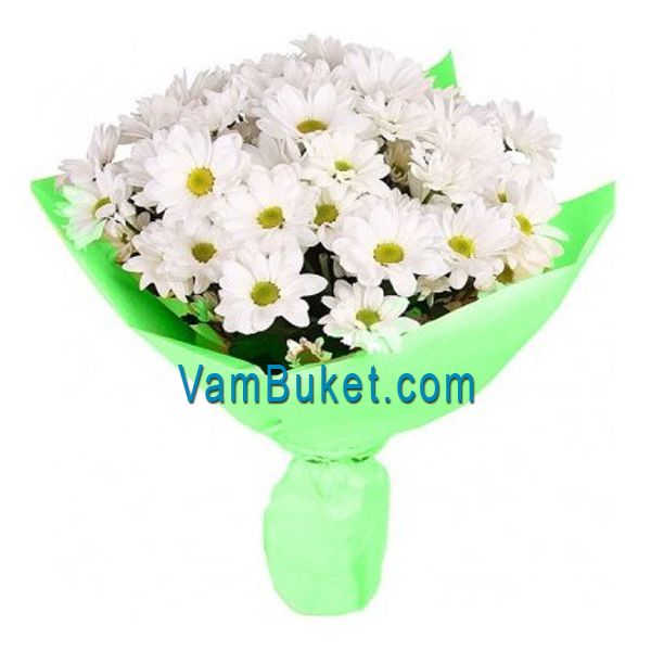 Bouquet Of 9 White Chrysanthemums In The Online Flower Vambuket