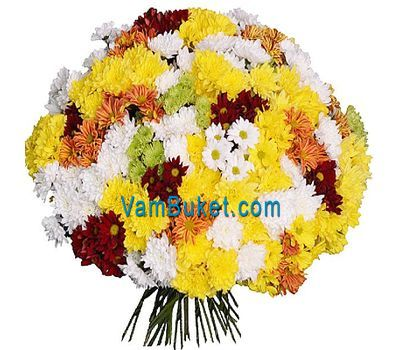 """Huge bouquet of 101 chrysanthemums"" in the online flower shop vambuket.com"