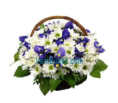 """Basket of flowers from 12 chrysanthemums and 5 irises"" in the online flower shop vambuket.com"