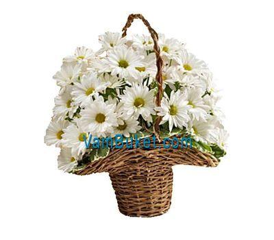 """Basket of 7 daisy chrysanthemums"" in the online flower shop vambuket.com"