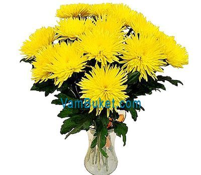 """Bouquet of 19 yellow chrysanthemums"" in the online flower shop vambuket.com"