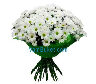 """A bouquet of flowers from 19 chamomile chrysanthemums"" in the online flower shop vambuket.com"